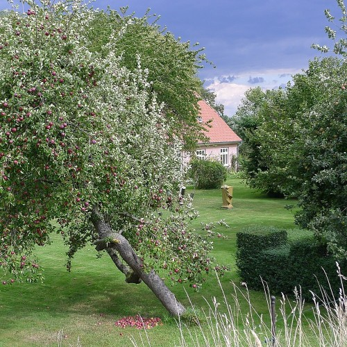 Blick in den Garten von Klaus Großkopf