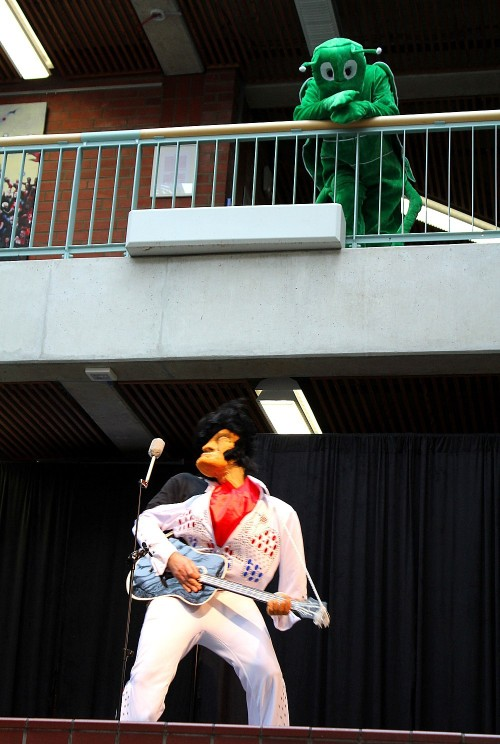 Elvis the pelvis und Grashüpfer Flip