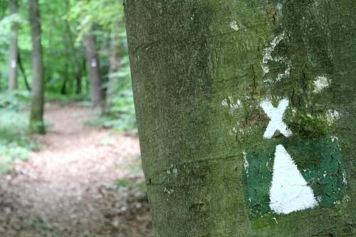 Ein X kennzeichnet den Weg